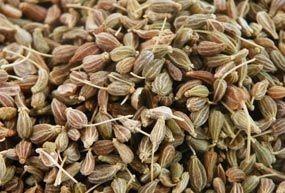 Anis vert grain