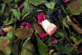 Thé Perle des Caraibes