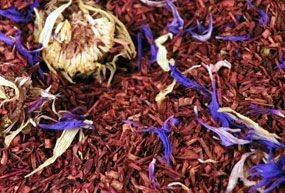 Rooibos Orange - Mangue