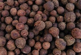 Piment de Jamaïque - Bois D'Inde