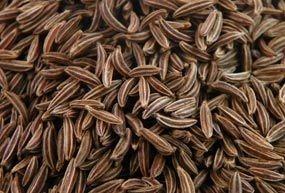 Carvi noir grain