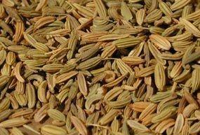 Fenouil graine